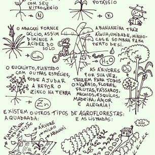 Fanzines do @coletivo_eparreh
